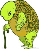 old-turtle-18743202